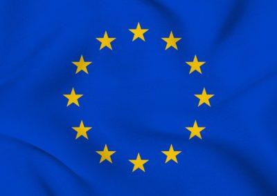 EU er gået glip af milliarder fra Facebook og Google