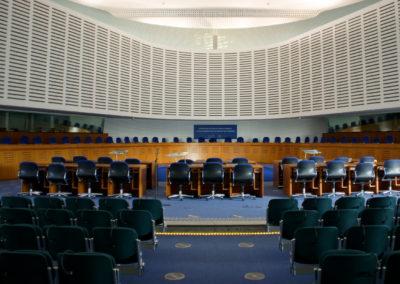 Pape i spidsen for reform af domstol: Menneskerettigheder er ikke urørlige