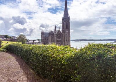 Irlands abortforbud ophæves efter 35 år ved folkeafstemning